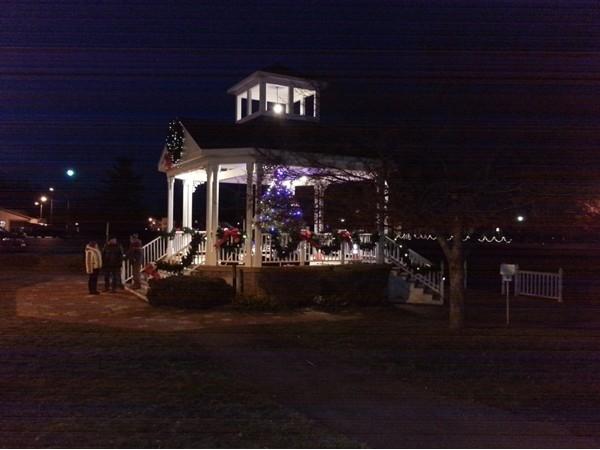 The lighting of Spencerport Village Christmas tree!