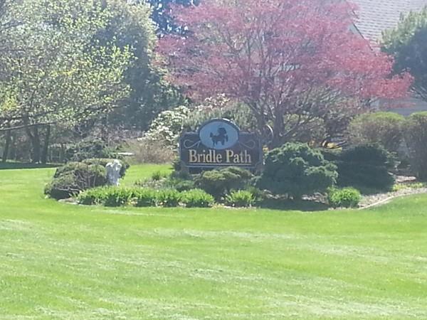 Welcome to the wonderful Bridle Path neighborhood!