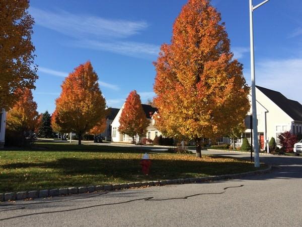 Fall in Brigadoon in Highland Mills