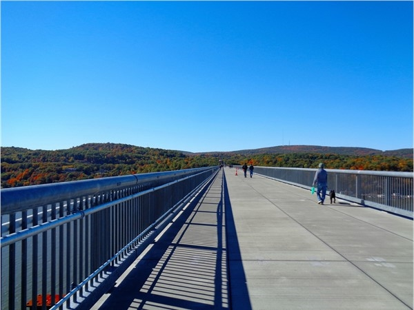 "Walkway over the Hudson is ""pet friendly"" too, plus a great way to enjoy the fresh air"