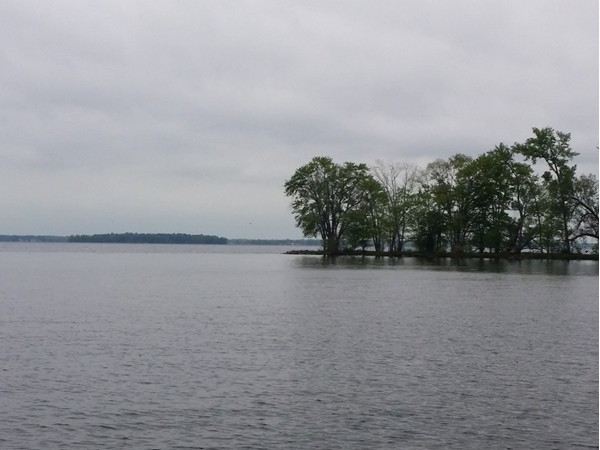 Oneida Lake from North Shore Constantia