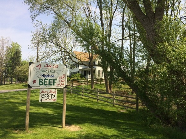 Local farms will sell eggs, beef, sweet corn, and vegetables galore