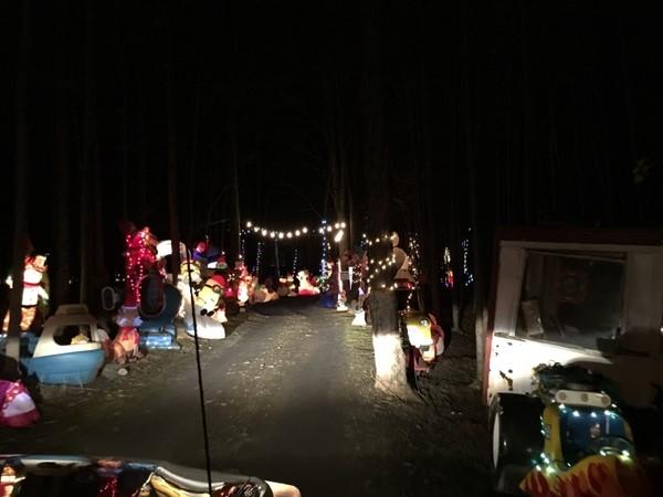 View of Watts Wonderland in Goshen