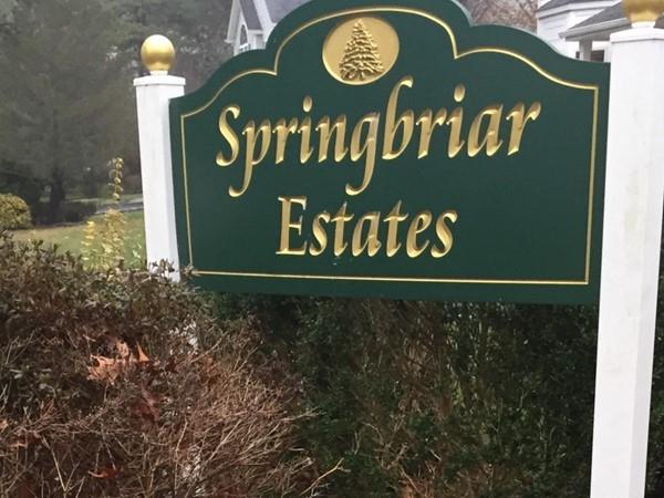 Fine Selden living in Springbriar Estates