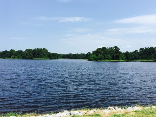 Even though it's 100 degrees, Lake Dockery is always a beautiful site