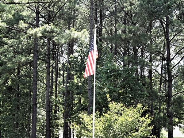 Residents in North Brandon Estates show their patriotism
