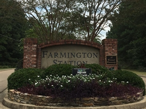 Farmington Station is a wonderful neighborhood in the Flowood/Brandon area