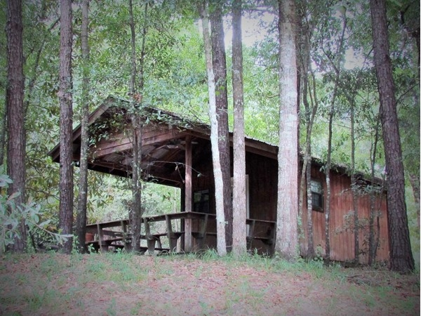 Hilltop cabin overlooking the Bogue Chitto River