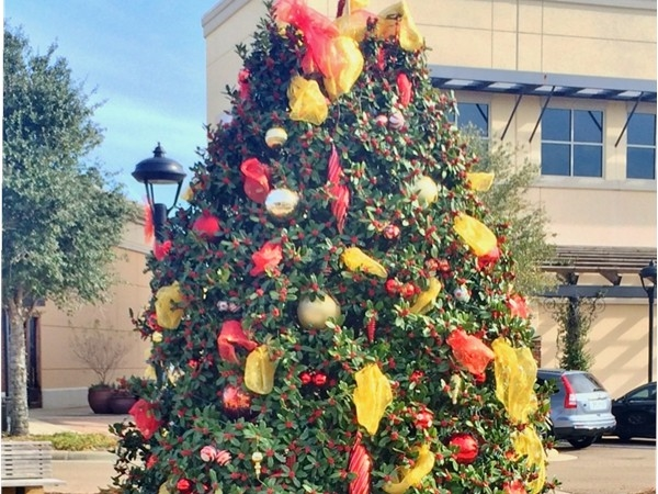 It's beginning to look a lot like Christmas at the Dogwood Festival Mall