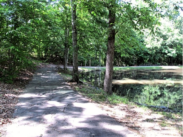 A walking trail winds around the lake and playground