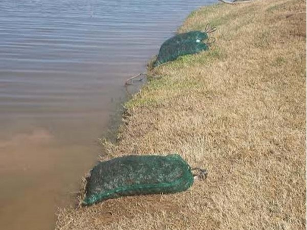Bags of Crawfish line Wellsgate Lake waiting to be released to feed the Bass