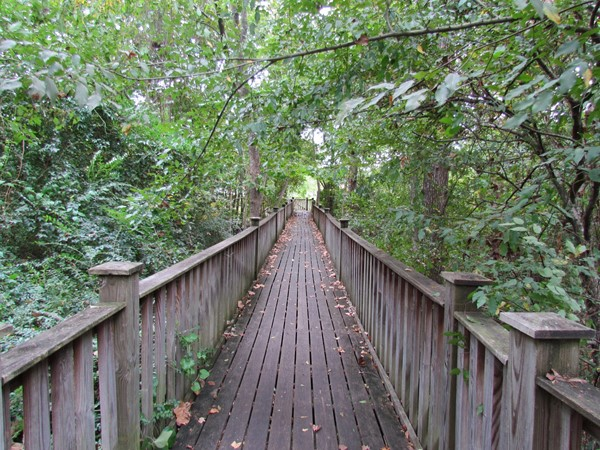 Walking trails at Monticello's Cooper Ferry Park