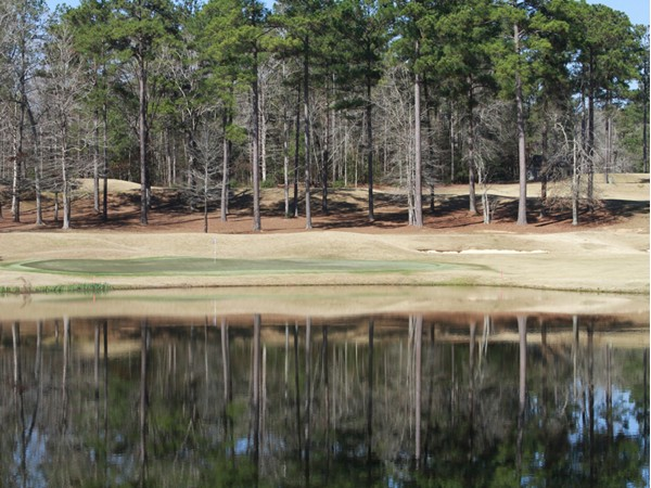"""Quail Hollow Golf Course"" at Percy Quinn State Park in McComb, MS"