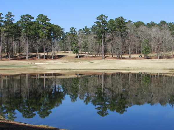 For the golfer and nature lover in you! Quail Hollow Golf Course in McComb, MS
