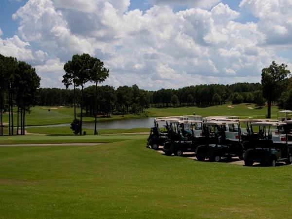 Luxurious Reunion Golf Course