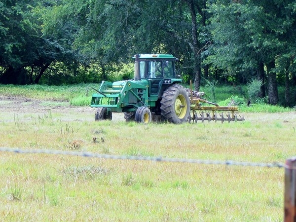 Amite County has plentiful farmland