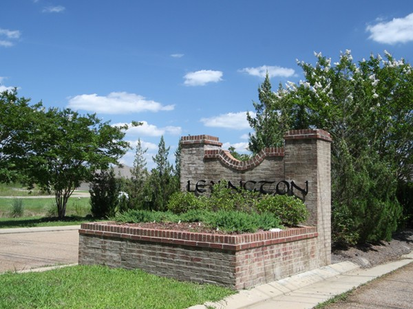 Lexington subdivision real estate homes for sale in for Home builders in mississippi