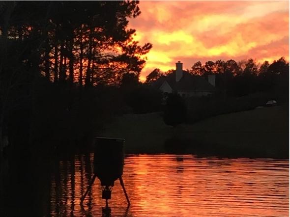 Bridgefield sunset