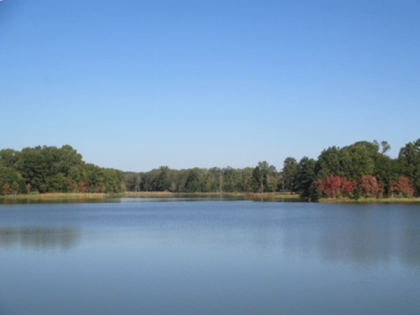 Peaceful Lake Dockery - enjoy the fall foliage