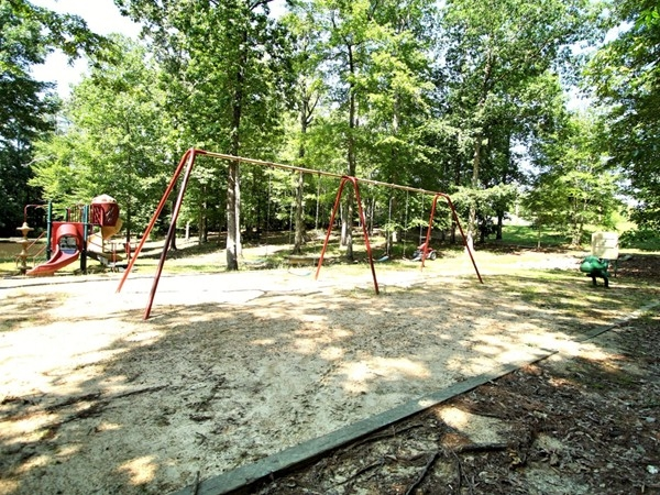 Shady playground for the kids to play