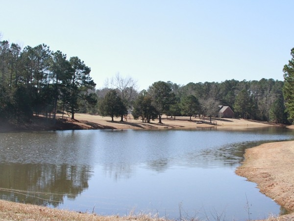 """ The Beautiful Lake""  at the Dixie Springs Estate in Summit, MS!"