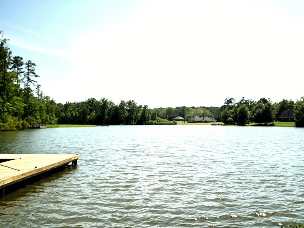 This beautiful lake is in the North Ridge Park section of North Brandon Estates