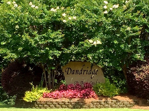 Dandridge, a great neighborhood with a great pool