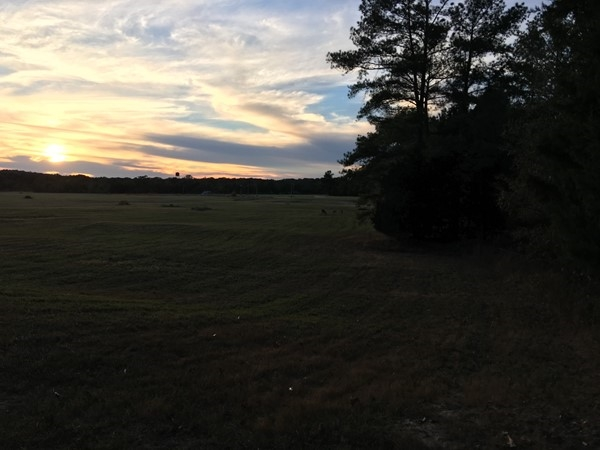 Beginning of a beautiful sunset on the bike trails at Butts Park just south of Clinton