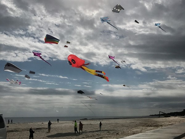Great kite day on the beach