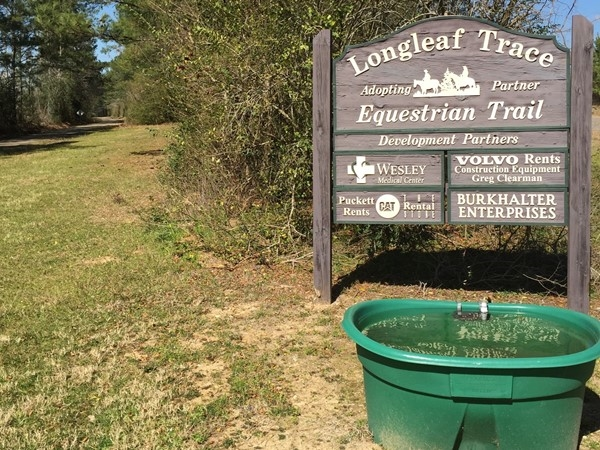 Water trough for equestrian trail at Longleaf Trace