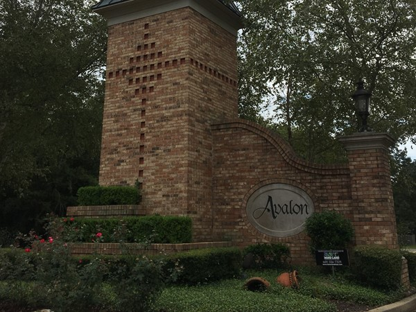 Avalon is one of Flowood's most sought after neighborhoods