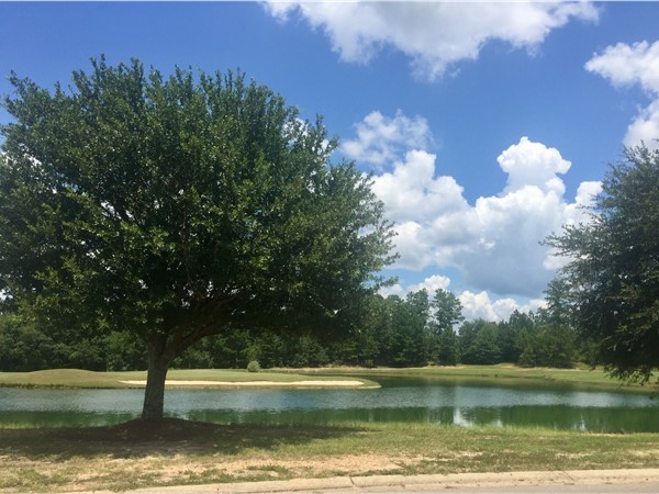 Open to the public, Shadow Ridge is a 18 hole golf course conveniently located in W Hattiesburg