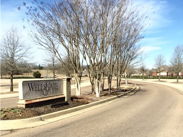 Wellsgate Subdivision entrance. Wellsgate is a popular neighborhood west of Oxford and Ole Miss.