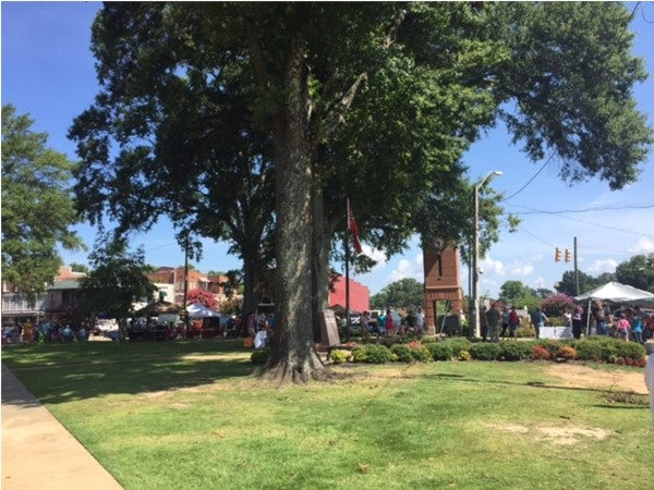 Wonderful, top rated Hernando Farmer's Market at the Courthouse Square every Saturday morning