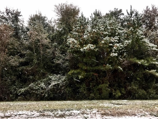 Snow in Coastal Mississippi - a rare event
