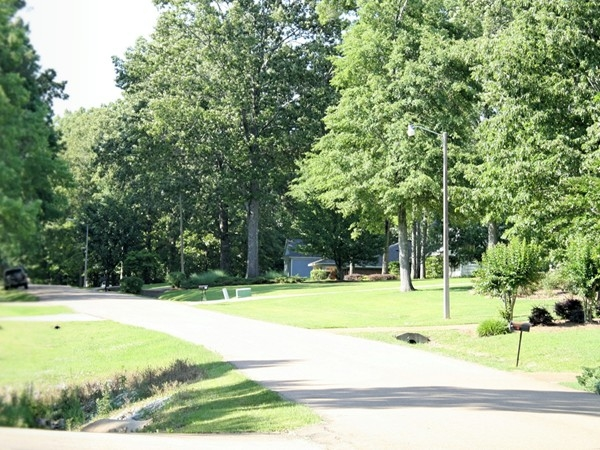Easthaven Estates boasts large shady lots and quiet streets