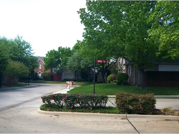 Big, beautiful, shady, tree lined streets are signature to Chapel Glen's charm