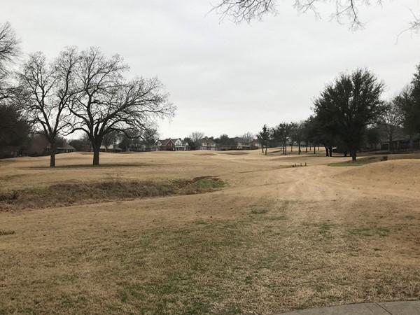 Golf Course at Quail Creek