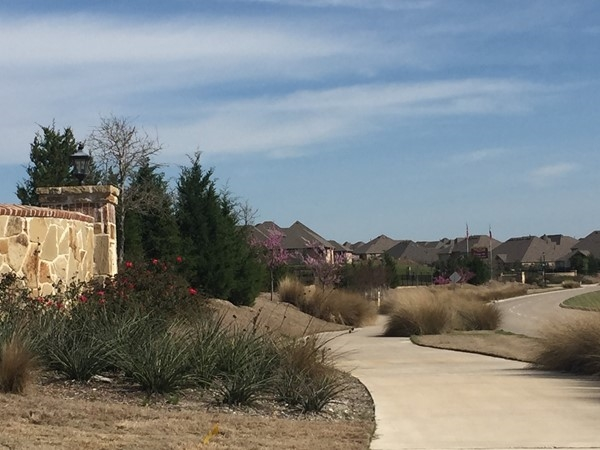 Beautiful Master Planned Community in Northern Rockwall