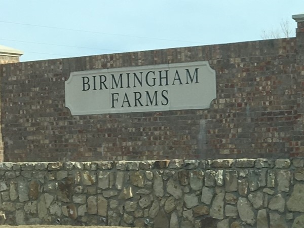 Birmingham Farms Centex homes located next-door to Dodd Elementary and city soccer fields