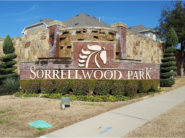 Welcome to Sorrellwood Park