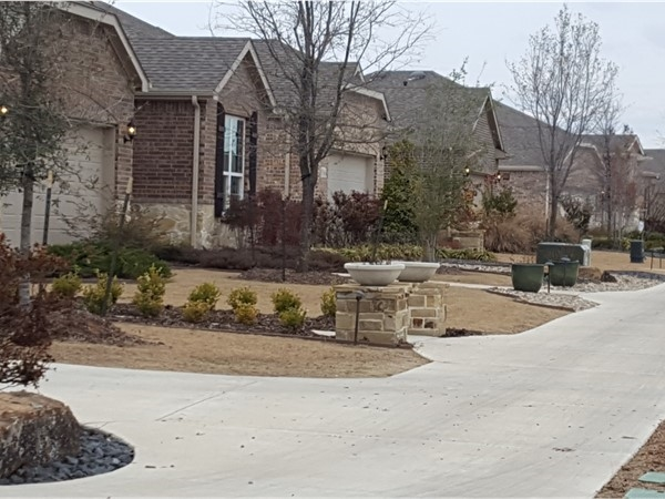 Model homes in Frisco Lakes