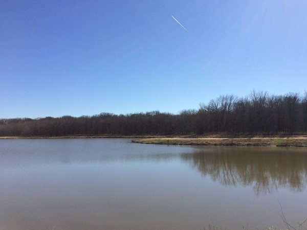 Oak Point Park & Nature Preserve is a great place to walk on a winter day