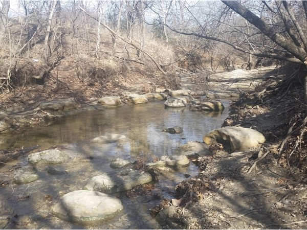 Hiking trails and creeks in Arbor Creek Nature Preserve