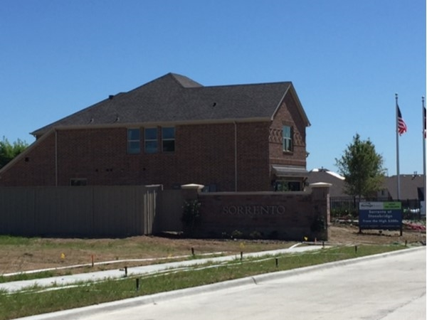 Sorrento in McKinney by Megatel Homes