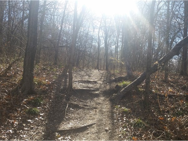 Visitors enjoy the hiking trails and creeks in Arbor Creek Nature Preserve
