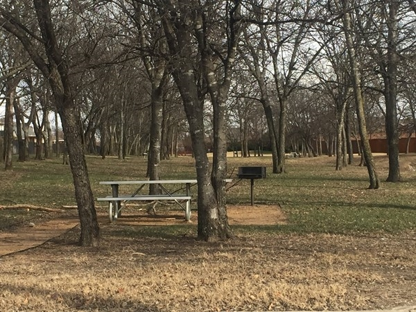 Riverchase picnic areas and grills