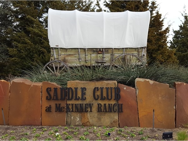 Welcome to Saddle Club