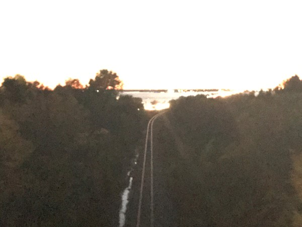 Why do I love photos of RR tracks? This subdivision is literally on the other side of the tracks